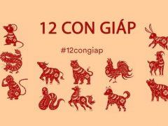 12 con giáp trung quốc
